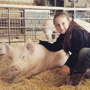 Wilbur the Pig
