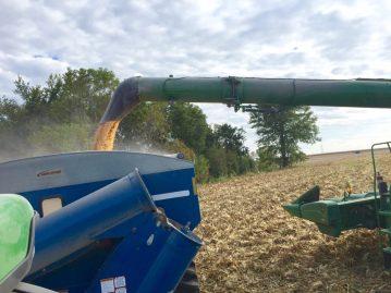 Harvest2015a