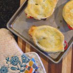 Easy Chicken or Turkey Pot Pie at FoodApparel.com