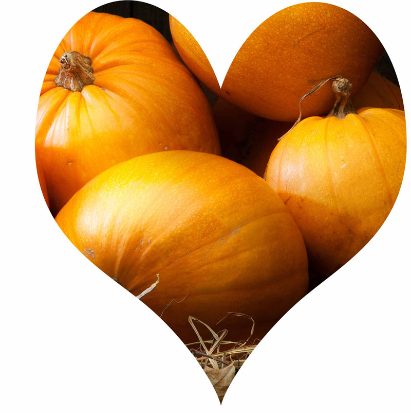 Pumpkin Love at FoodApparel.com