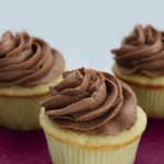 Vanilla Bean Cupcakes with Fudgy Chocolate Frosting at FoodApparel.com