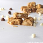Orange White Chocolate Macadamia Nut Blondies at FoodApparel.com