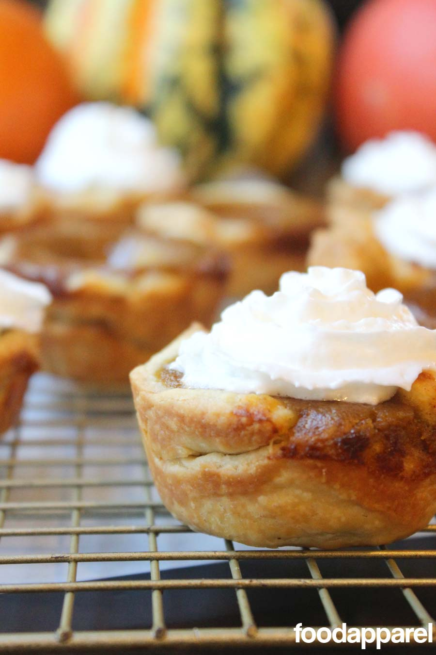 Mini Pumpkin Pie Recipe - a perfect single-serve pie for Thanksgiving so you can try them all! Recipe @food apparel