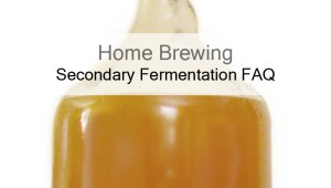All About Secondary Fermentation – The Two Stage Fermentation FAQ