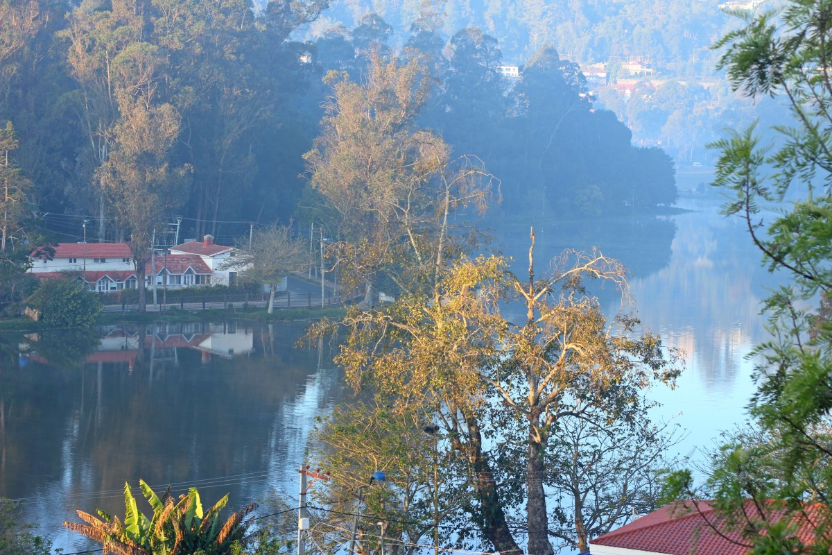 The lazy person's guide to Kodaikanal