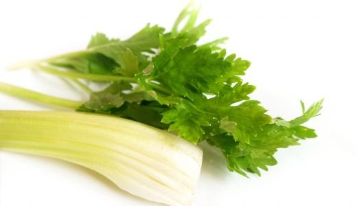 セロリの葉には栄養がいっぱい? 茎部分より優れる栄養効果も!