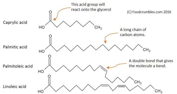 Fatty acids