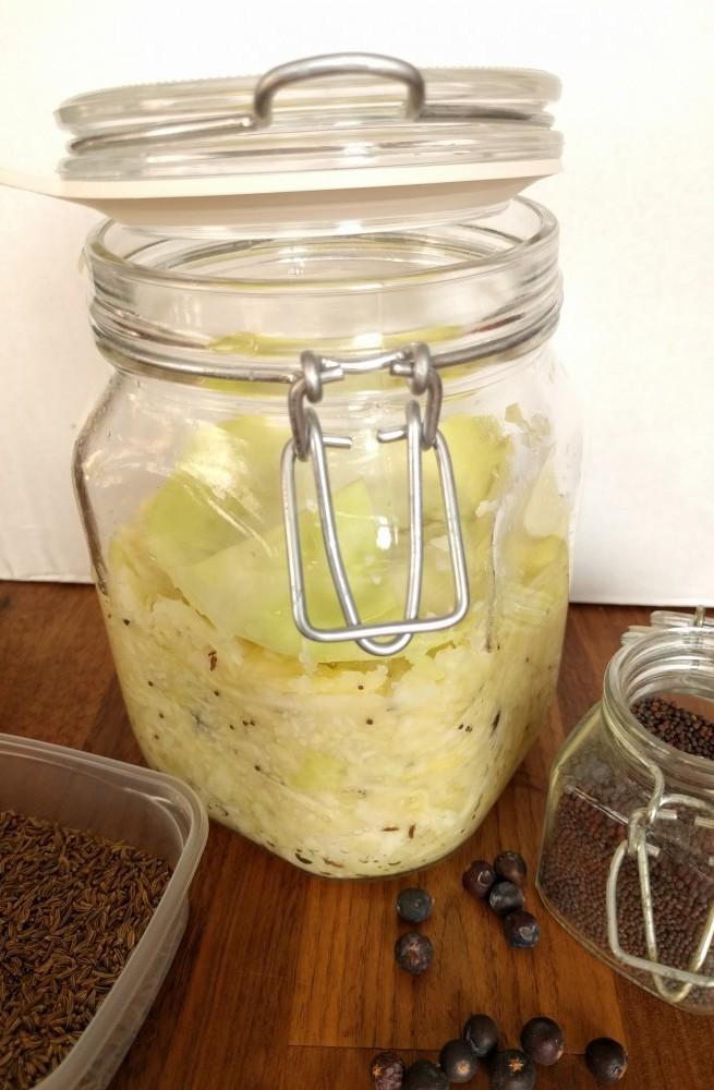 sauerkraut, ready for fermentation