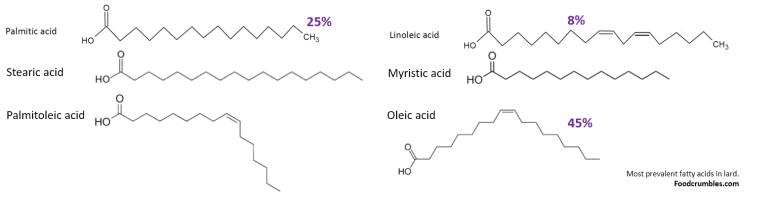 most-prevalent-fatty-acids-in-lard