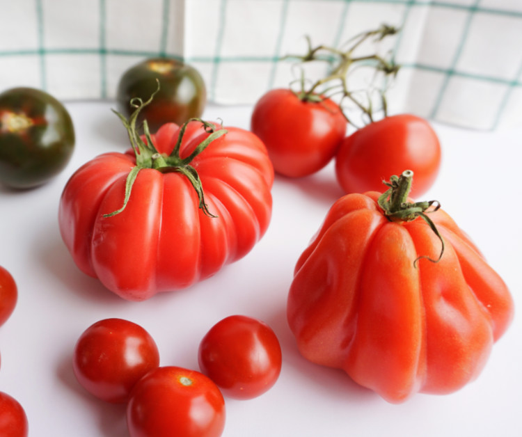 green and various types of red tomatoes