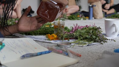 Gathering Ground, Herbal Medicine Class, food. curated.