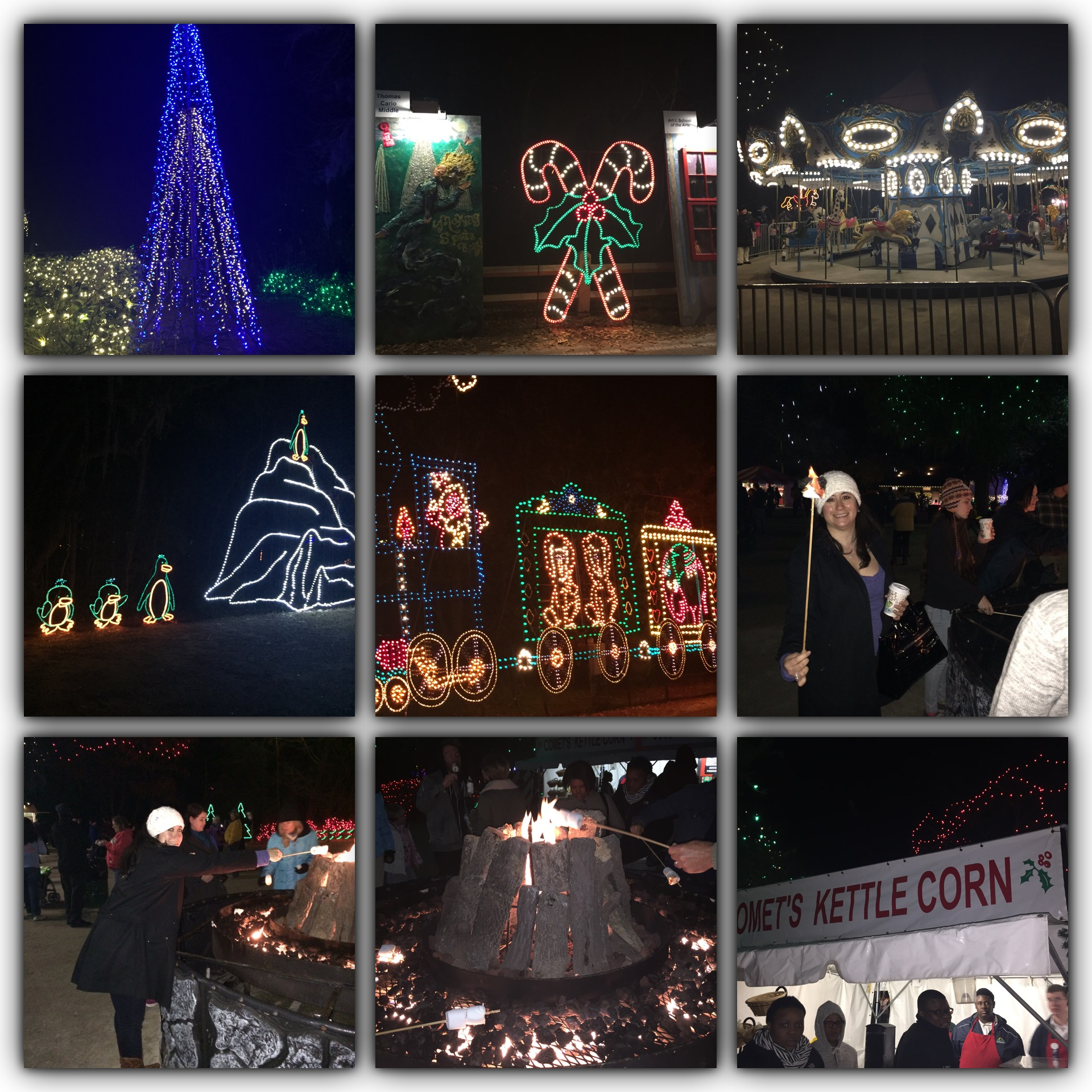 Holiday Festival of Lights at James Island County Park