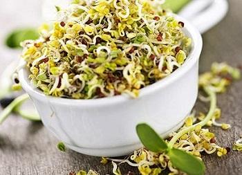 tea a gyógynövény zsírjának égetésére