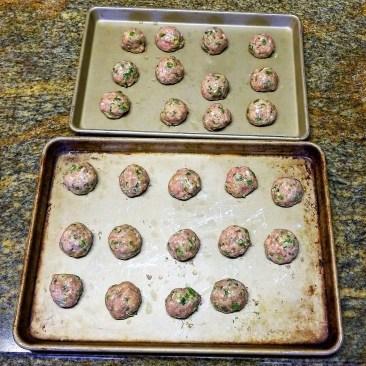 meatballs4 - Copy