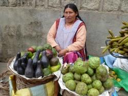 Avocados and chermoya in market_Sorata_Bolivia2013_photo by Tanya Kerssen