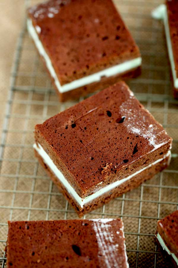 Close up picture of ice cream sandwiches.