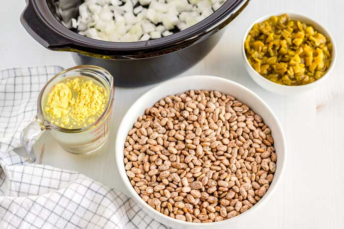 All of the ingredients that you need to make crockpot pinto beans.