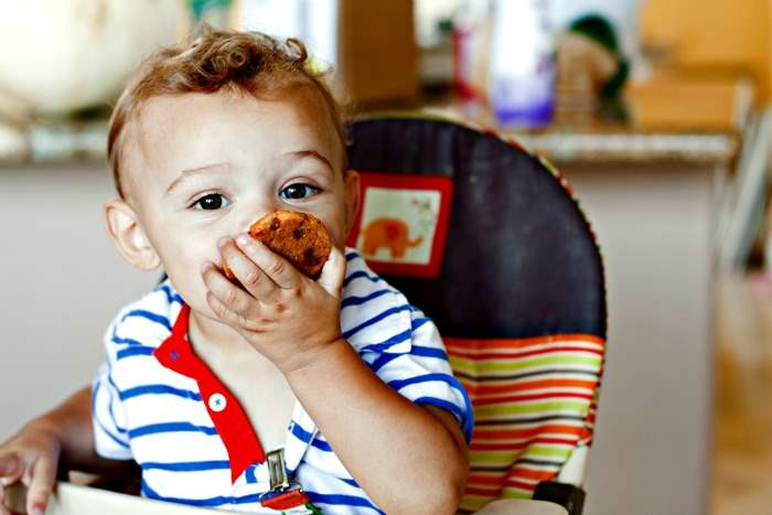 Cute 1 year old eating pumpkin pudding cookie.