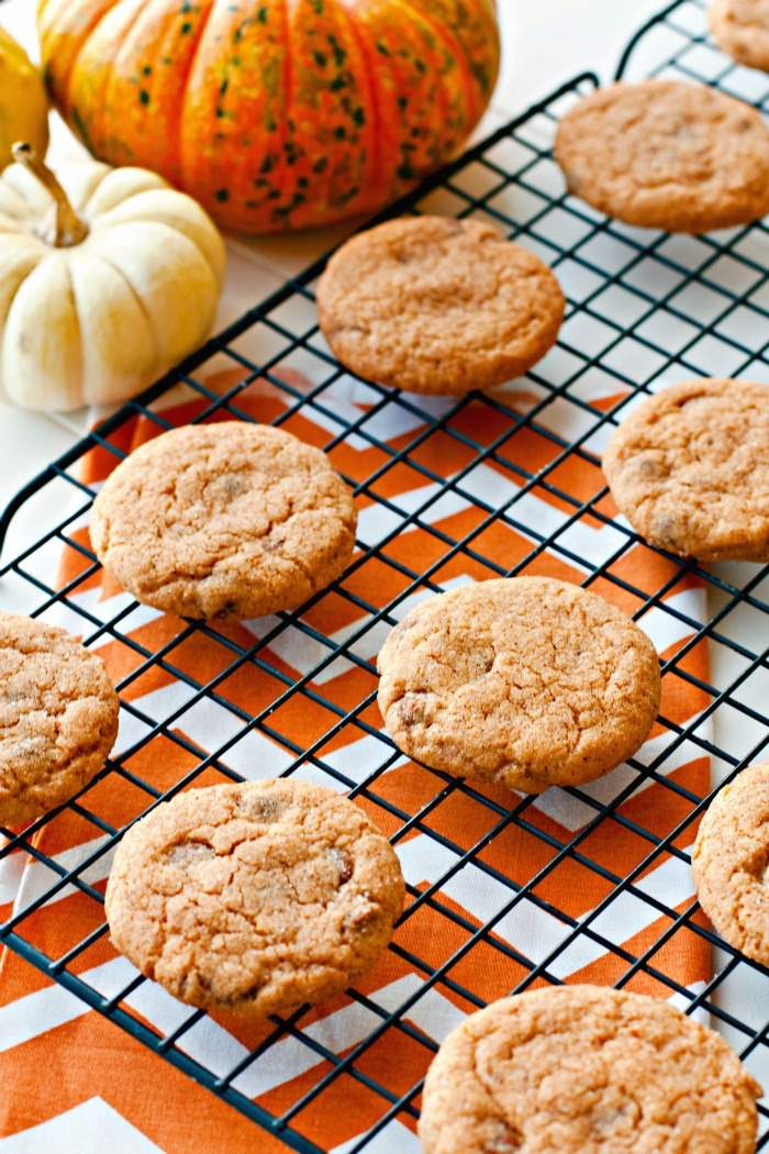 These Pumpkin Snickerdoodles are so easy to make and perfect for fall. They're made with a pudding mix which makes them soft and chewy, plus they're dotted with cinnamon chips.