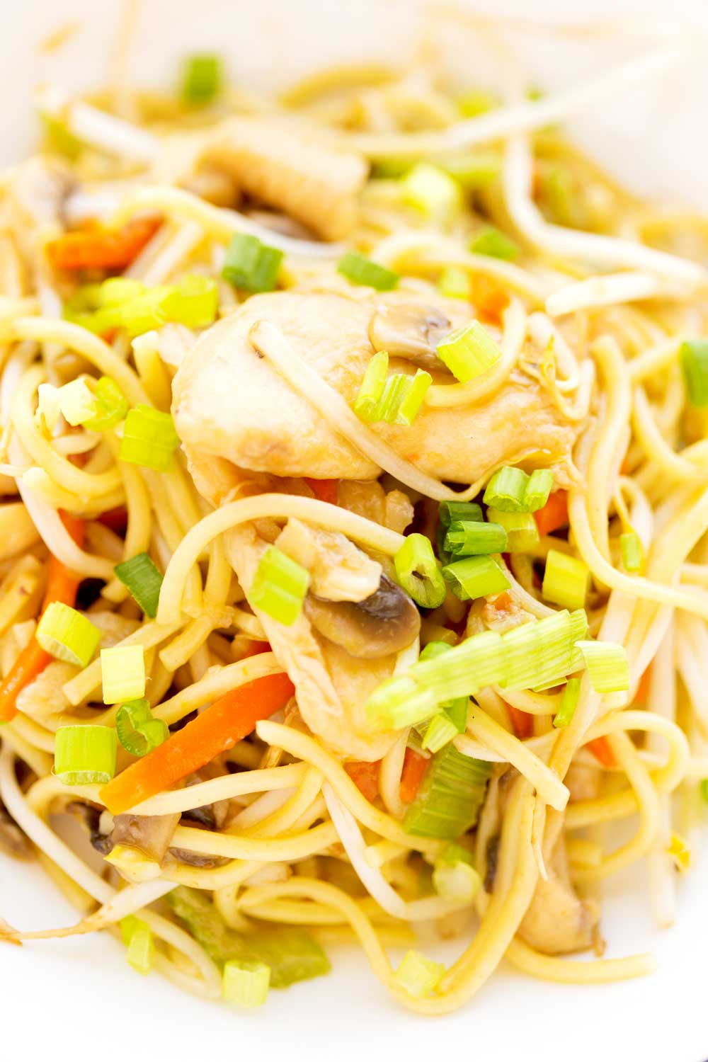Chow Mein made from scratch.