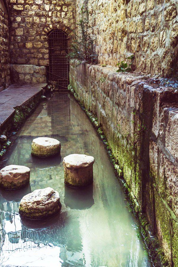 City of David 3