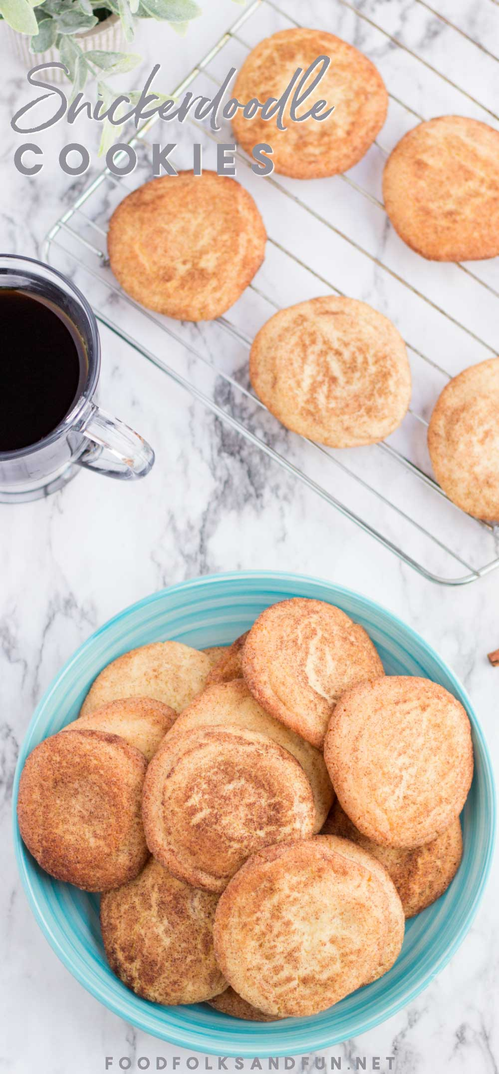 Snickerdoodle cookies on a plate and a wire rack