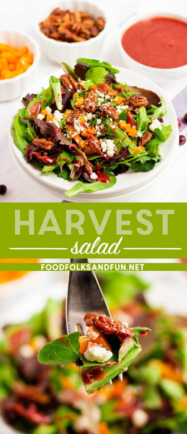 Harvest Salad recipe with Cranberry Vinaigrette