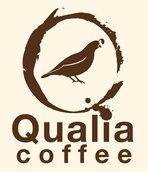 qualia_logo_minix2_1440094399__08172