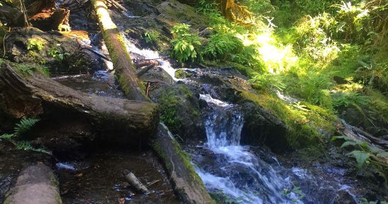 Top Hikes & Eats On ((or near)) Orcas