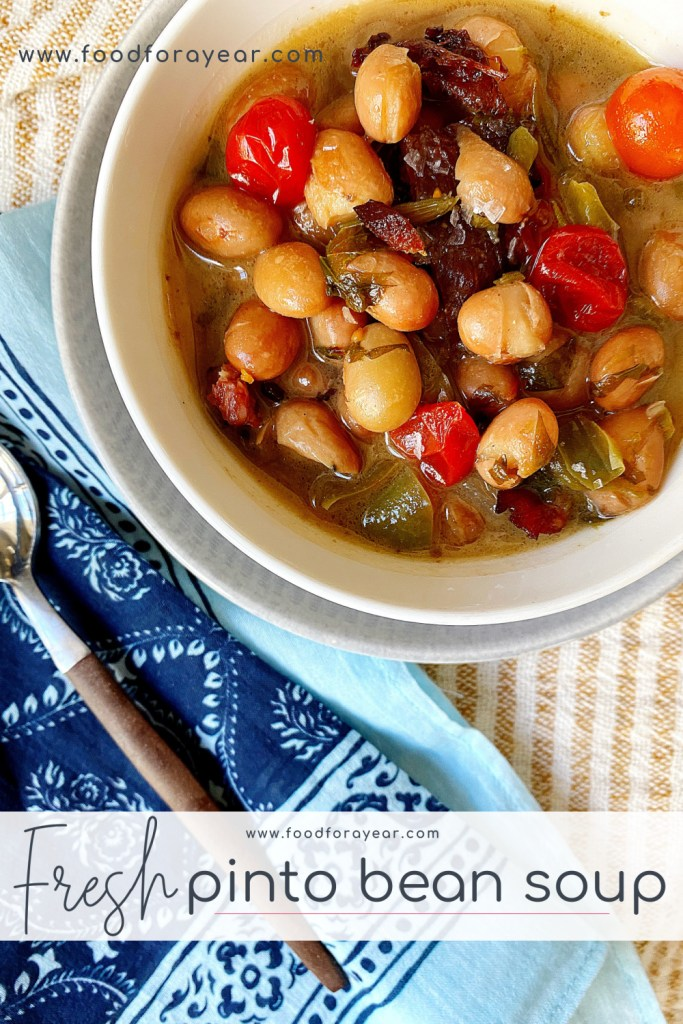pinable fresh pinto bean soup image