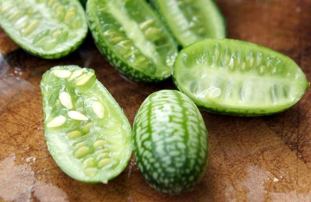 Cucamelons | Food Trends for 2016 | Food For Thought