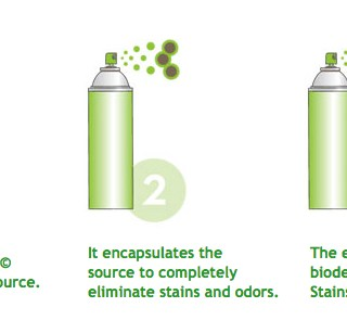 how clean+green works