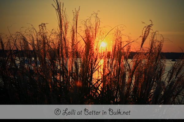 Autumn Sunsets…Ahh! PSF – GMYBS