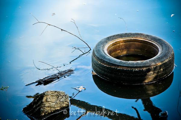 old tire in a lake - nature photography
