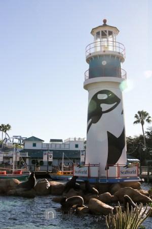 SeaWorld Orlando theme park tickets