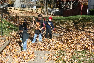 Jumpin' in the leaves!
