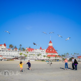 Coronado California #WordlessWednesday
