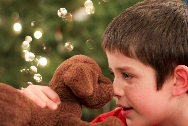 Brighten Your Holiday Season with Energy Savings