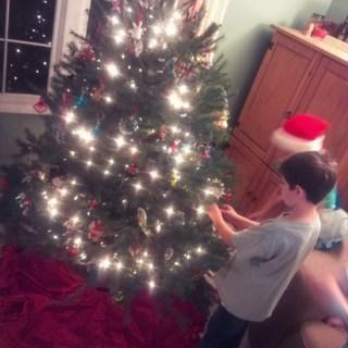 Christmas Tree 2013 {Wordless Wednesday}