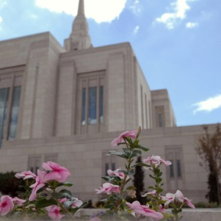 Ogden Temple Open House #WW