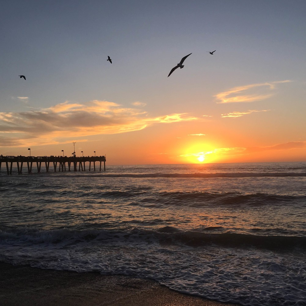 Florida Sunset at Venice Beach by Food Fun Family