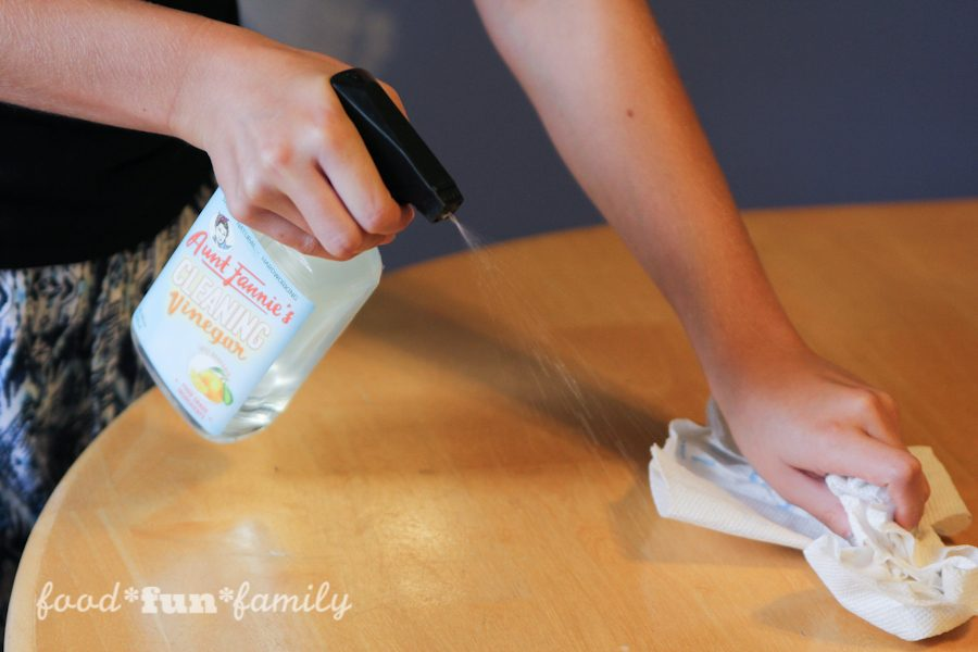 Aunt Fannie's Cleaning Vinegar and FlyPunch: plant-based, non-toxic cleaners and pest control that is safe to use around food, children, and pets #HealthierHousekeeping