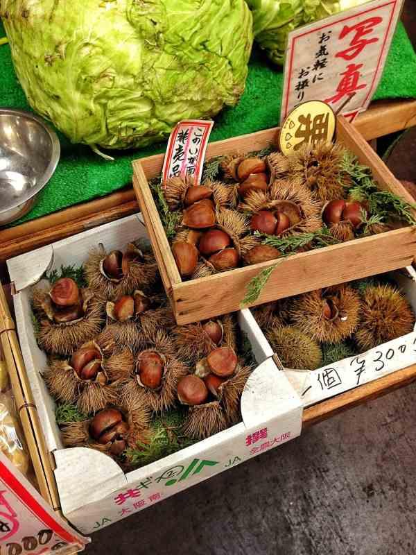 Foodicles Kyoto Nishiki Market 4