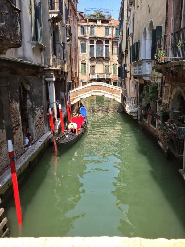 Foodicles Venice 19