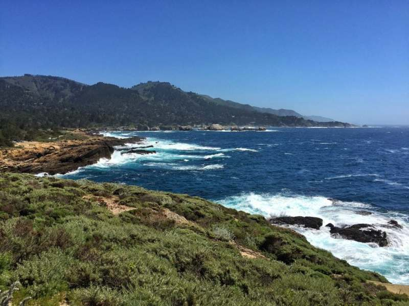 Foodicles Point Lobos 2