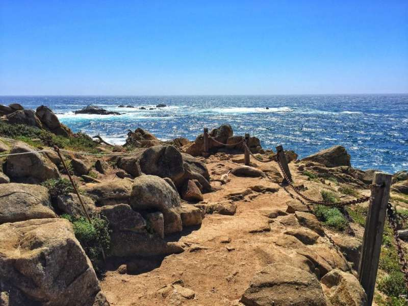 Foodicles Point Lobos 3