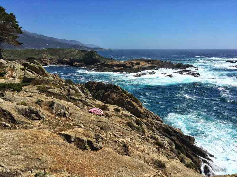 Foodicles Point Lobos 4
