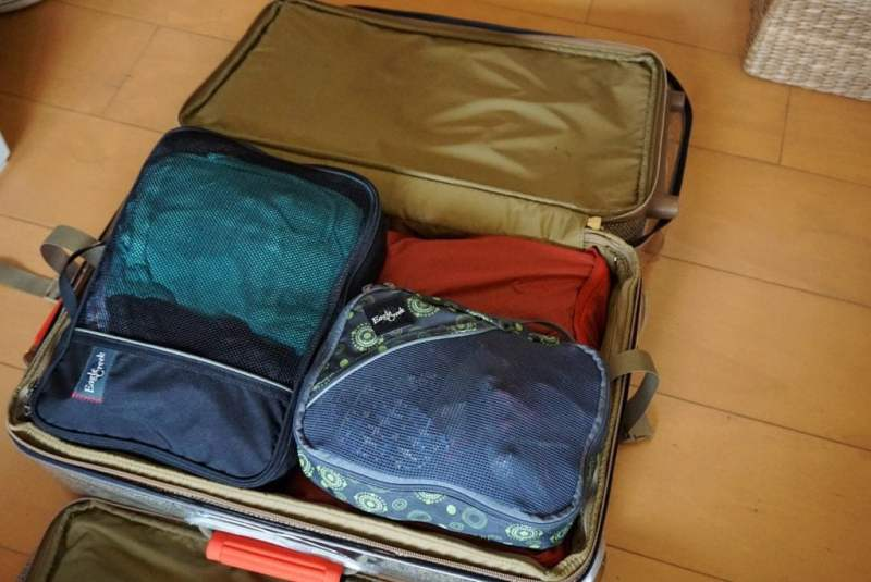 Foodicles Travel Cubes 15