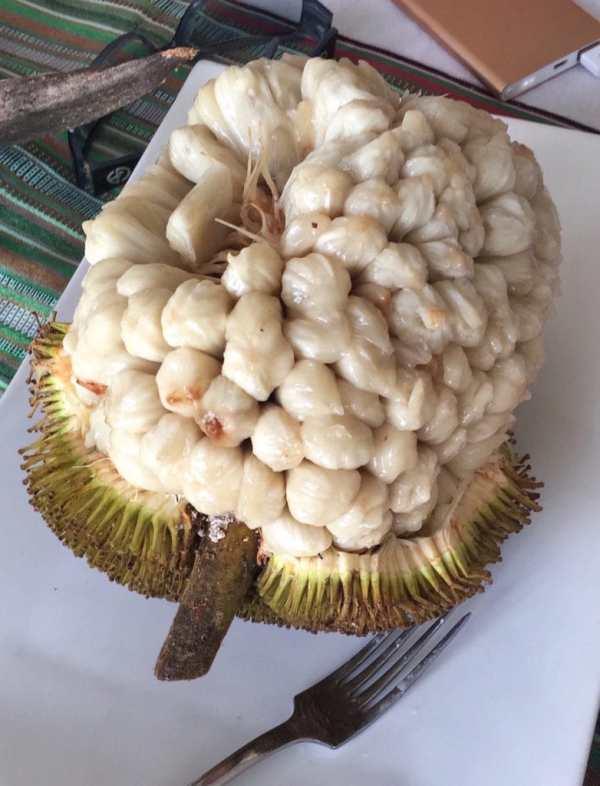 foodicles-banana-beach-hijo-resort-20-davao-marang