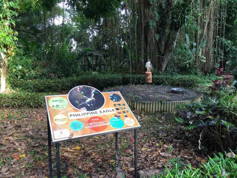 foodicles-davao-2-philippine-eagle-sanctuary